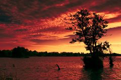 Fire in the sky. Red sunset over a lake in the netherlands royalty free stock photos