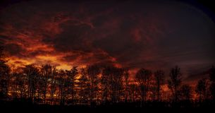 Fire Sky Burning over a Forrest. Of trees stock image