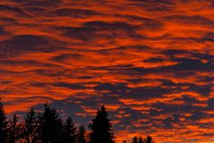 Fire in the sky. Red sunset with clouds over the forest. Royalty Free Stock Photos