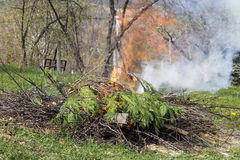 Fire and Smoke from during Burning branches Stock Photo