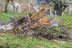 Fire and Smoke from during Burning branches Royalty Free Stock Images
