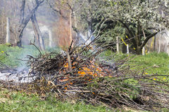 Fire and Smoke from during Burning branches Royalty Free Stock Image