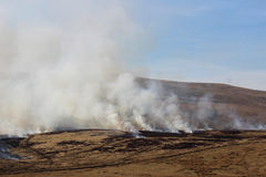 Fire and smoke on burning moorland vegetation Royalty Free Stock Images