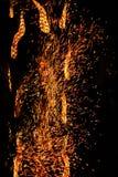 Fire sparkle Stock Image