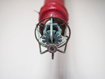 Fire sprinkler system close up. Fire sprinkler system on ceiling Stock Photo