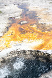 Fire Stained Earth Stock Photos