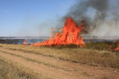 Fire in steppe  Royalty Free Stock Photos