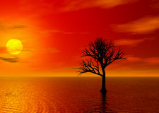 Fire Sunset. Lone treen in fire sky sunset vector illustration