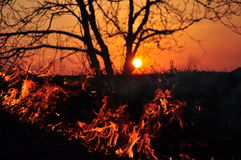 Fire and sunset Royalty Free Stock Photo