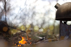 Fire and teapot in the wood Stock Photography