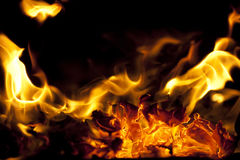 Fire texture Royalty Free Stock Photo
