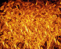 Fire texture background Stock Photo