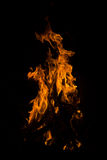 Fire. There is flame of fire at night stock photo