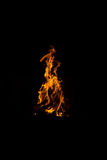 Fire. There is flame of fire at night Royalty Free Stock Photography