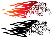 Fire tiger. Isolated illustrated fire tiger design royalty free illustration