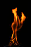 Fire tongue Stock Photography