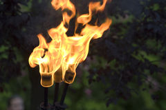 Fire torch. Medieval fire torch during the Rodemack Festival royalty free stock photography