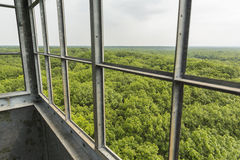 Fire Tower View Stock Image