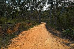 Fire trail in the Australian bush. Fire trails in the Australian bush are dirt roads that allow fire brigades to easily enter at the source of a bush fire stock photography