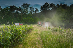 Fire trucks going to extinguish forest. Fire trucks going to extinguish a burning forest Royalty Free Stock Image