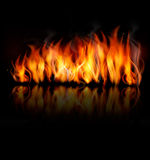 Fire vector on black background. Stock Images