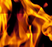 Fire in vector format. For use as a design element or a creative background. Fire flame on black background Stock Image