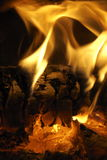 Fire Vertical. A nice warm fire burning Stock Image