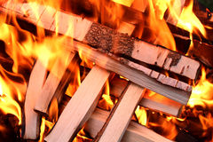 Fire whit wood Stock Image