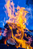 Fire in the wild nature. During traveling Royalty Free Stock Images