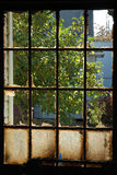 Fire Window Royalty Free Stock Images