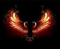Fire wings on black background. Wings of fire and flame on black background. Fiery wings Stock Photo