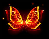 Fire Wings of Butterfly on black background. Artistic painted, fire butterfly wings on a black background. Fiery wings Royalty Free Stock Photos