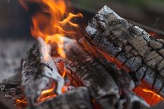 Free Fire With Charcoals. Burning Wood. Macro. Live Flames With Smoke. Wood With Flame For Barbecue And Cooking Bbq. Bright Color. Royalty Free Stock Photos - 111098448