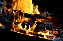 Fire of wood Royalty Free Stock Image