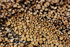 Fire wood. Blosk's of fire wood background Stock Image