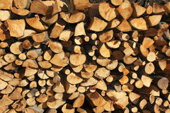 Fire wood. Pile of beech fire wood stock image