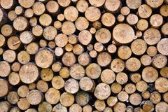 Free Fire Wood Stock Images - 3091424