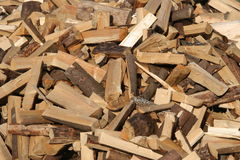 Fire wood. Pile of firewood, fresh cut Royalty Free Stock Image