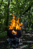 Fire in the wood. Barbecue fire in the green wood in the summer Stock Photos