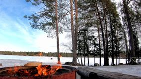 Fire with wood for barbecue in a snow land  covered with trees and frozen lake behind with beautiful landscape in a sunny day. Under the blue sky stock video footage