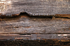 Fire wood beam Stock Images