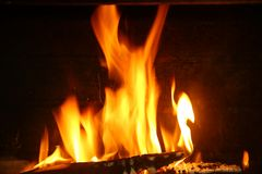 Fire of wood stock photography