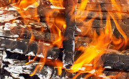 Fire of wood burning bright red  flame. Fire of wood burning bright red tongues of flame Royalty Free Stock Image
