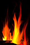 Fire. And wood burning on colorful Stock Images