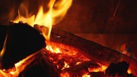 Fire wood burning in fireplace - closeup. HD 1080 static: Fire wood burning in fireplace - closeup stock video
