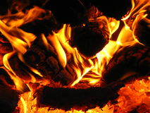 Fire wood burning in the furnace Stock Photography