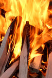 Fire and wood Royalty Free Stock Photo