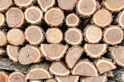 Fire Wood. Close up from a pile of wood for fire in winter Royalty Free Stock Image