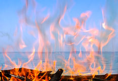 Fire of wood. On the coast of the sea Royalty Free Stock Photos