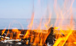 Fire of wood on the coast. Of the sea Royalty Free Stock Photo